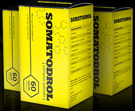 somatodrol1